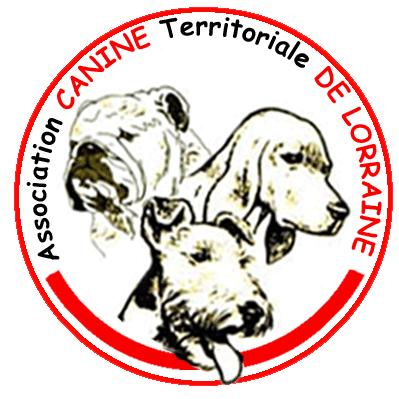Canine De Lorraine